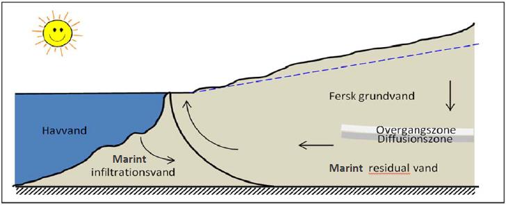 saltkoncentration i havvand